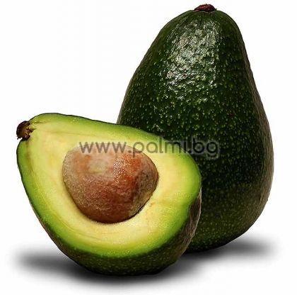Облагородено Авокадо